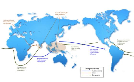 Mapa Viajes Coco